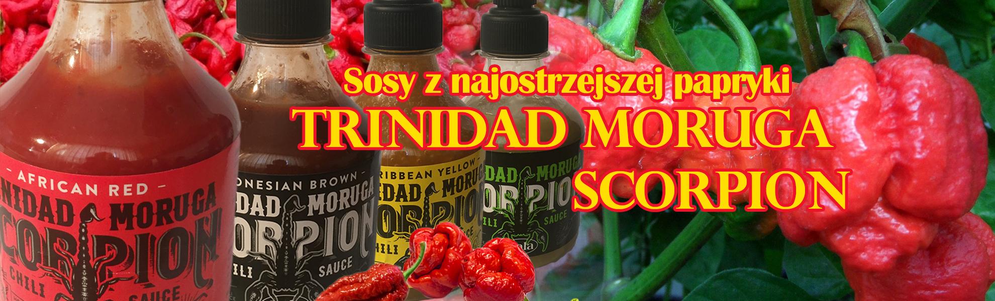 TRINIDAD-MORUGA-SCORPION-s2
